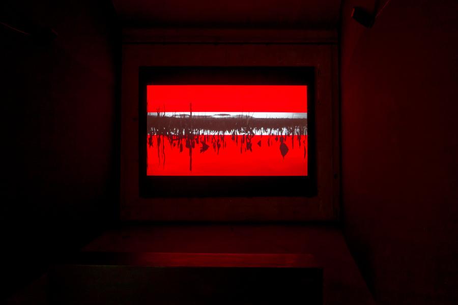 Nicolás Rupcich, Chepu, 2018, video HD, audio stereo, 8:33 min. (Operador drone: Jesús Soto, Asistente: Cristóbal Concha). Imágenes de un bosque muerto sumergido en Chiloé, que funcionan como antítesis a la representación comercial del paisaje. Cortesía del artista