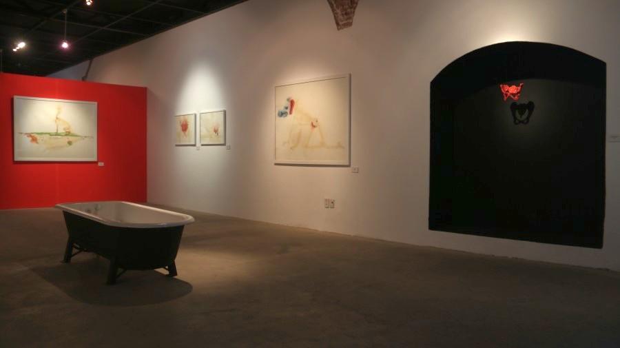 """Vista de la exposición """"Los Libros de la Sangre y de la Leche"""", de Alejandra Alarcón, en el MNA de Bolivia. Foto cortesía de Juan Fabbri"""