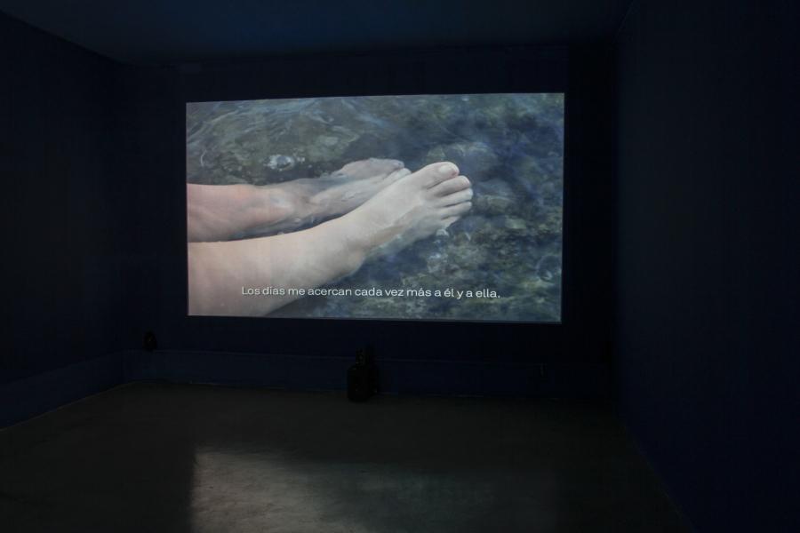 Carlos Motta, Deseos / رغبات (Deseos), video instalación, 2015. Cortesía del artista y CAC