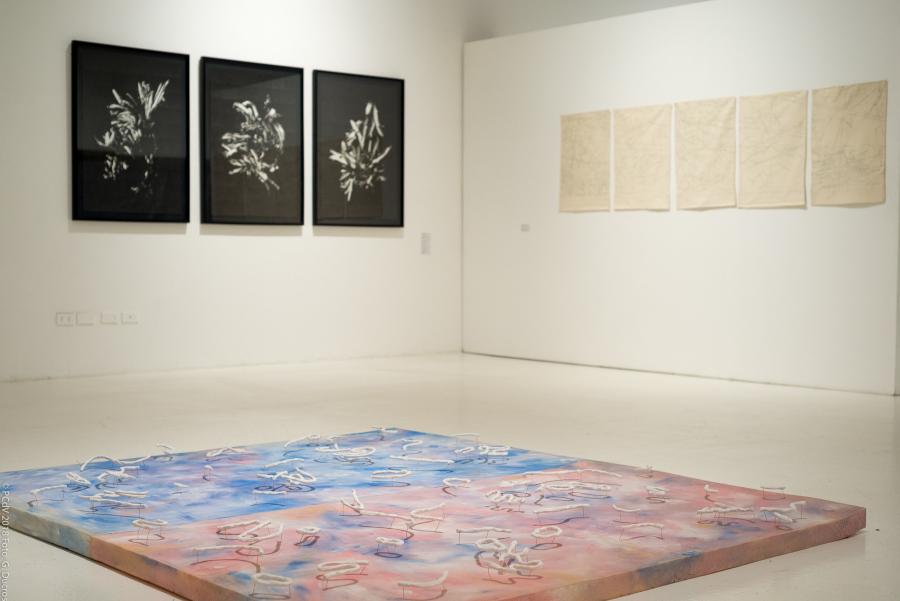 """Vista de la exposición """"La Deriva del Gesto y la Forma"""", en la Sala de Artes Visuales del Parque Cultural de Valparaíso, 2018. Foto: Gabriel Ducros/PCdV"""