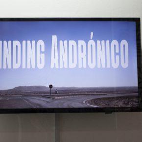 Juana Guerrero, Finding Andrónico, 2018. Vista de la exposición en Huérfanos 1373, vitrina local 25, Santiago de Chile. Foto: Marcela González