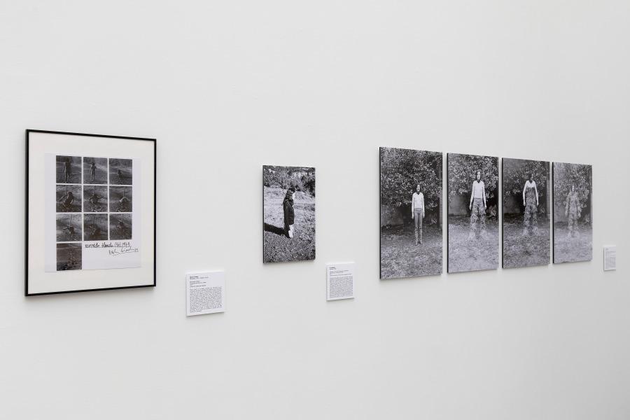 """Vista de la exposición """"Territorios que importan. Género, Arte y Ecología"""", en el Centro de Arte y Naturaleza (CDAN), Huesca, España, 2018. Foto: Javi Broto/CDAN"""