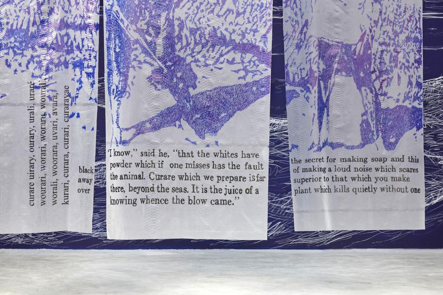 """Nicole Franchy, detalle de la instalación """"Amo del Curare"""", 2018, tres dibujos sobre vinyl transparente, 180 x 65cm c/u. Piezas únicas. Cortesía de la artista"""
