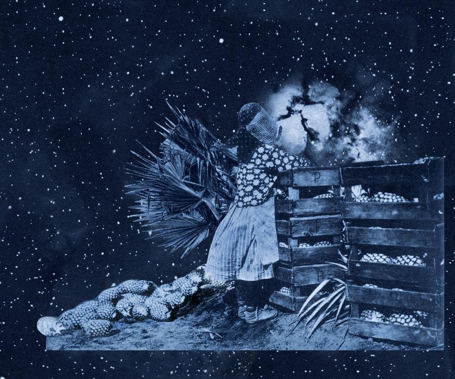 Nicole Franchy, Cosecha Tropical, 2018, collage, impresión digital sobre papel de algodón, 120 x 145 cm. Pieza única. Cortesía de la artista