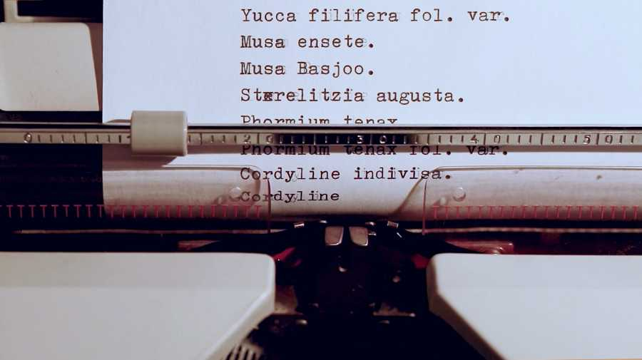 """Video-performance de la artista ecuatoriana Estefanía Peñafiel """"Re-pliegue"""", instalación audiovisual, 2018 (Museo Municipal de Arte Moderno). Foto cortesía de la Bienal de Cuenca"""
