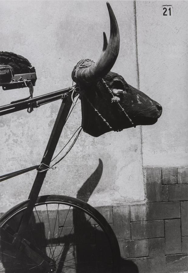 Graciela Iturbide, Torito, Coyoacán, Ciudad de México, 1982, fotografía, gelatina de plata. Colección Galería López Quiroga ©Graciela Iturbide. Cortesía: Museum of Fine Arts, Boston