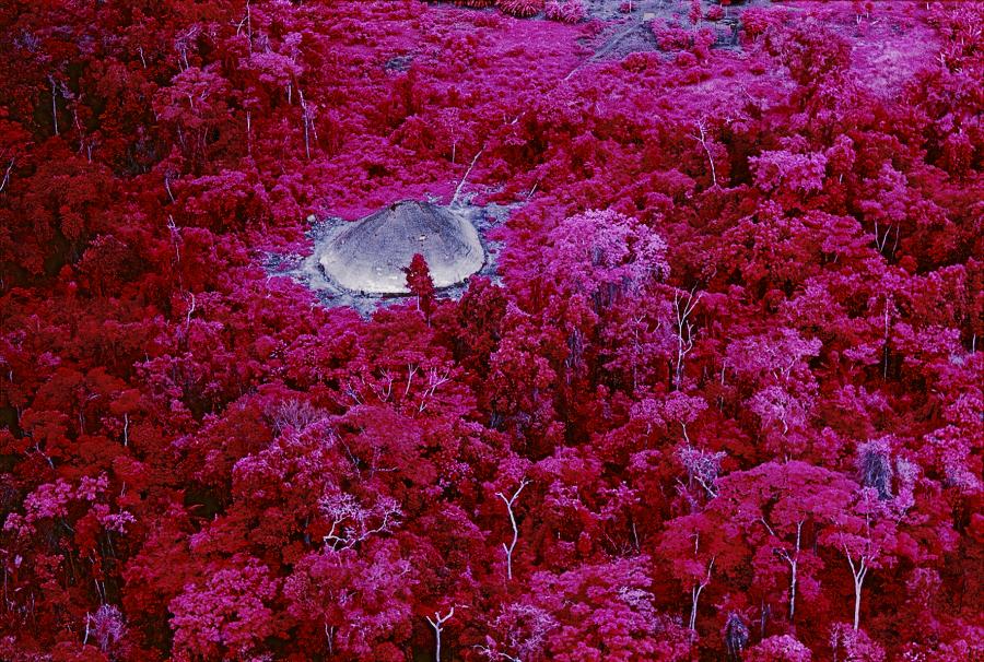 Claudia Andujar, 'A Floresta - Maloca próxima à missão católica do rio Catrimani', 1976, fotografía infrarroja © Claudia Andujar. Cortesía: Galeria Vermelho