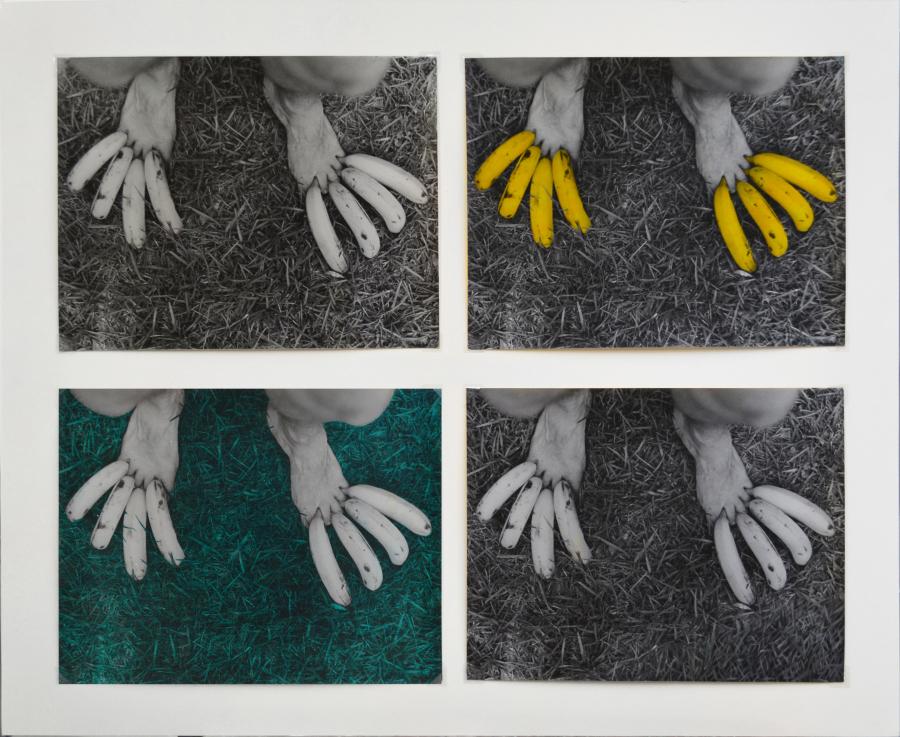 Victoria Cabezas, Sin título (Untitled), 1973, políptico, copia a la gelatina de plata coloreada a mano, 65 × 80 cm. Colección privada. Foto: Daniela Morales Lisac