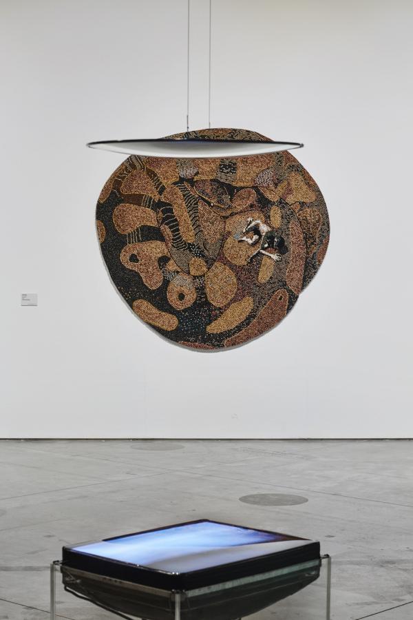 """Vista de la exposición """"Amazonías"""", en Matadero Madrid, 2019. Cortesía: Matadero Madrid"""