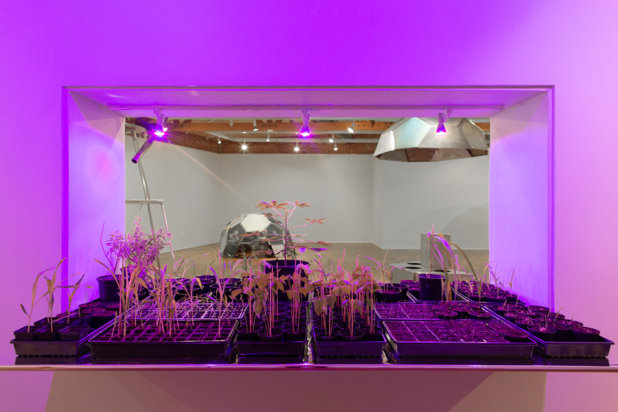 Beatriz Cortez, Trinidad: Joy Station (installation view at Craft Contemporary), 2019. Courtesy of the artist and Commonwealth and Council, Los Angeles / Photo: Gina Clyne.