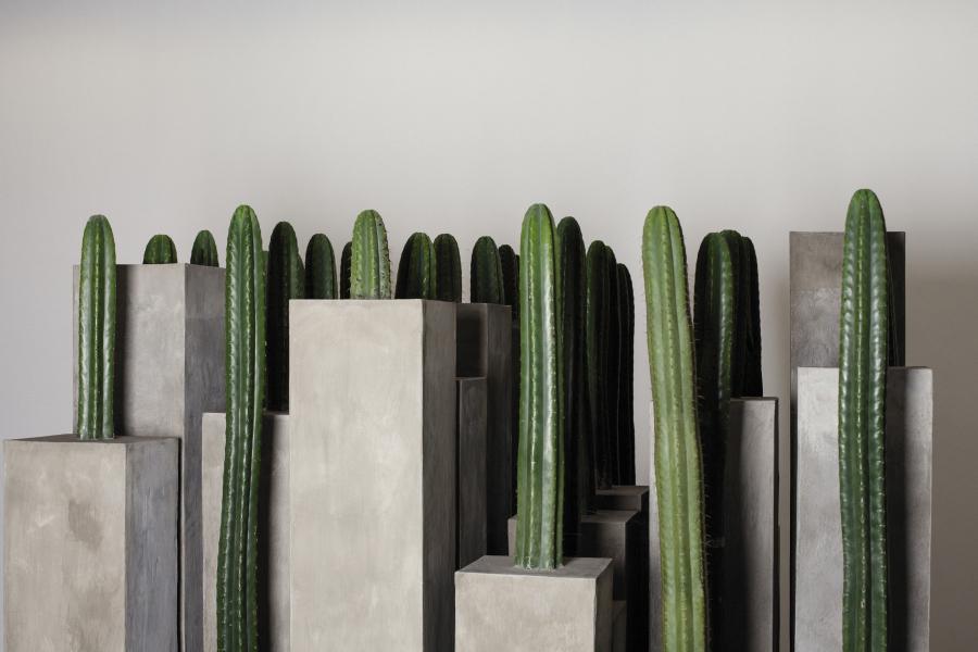 María José Argenzio, Paisajes en tensión (2019). Vista de la instalación en la Sala Luis Miró-Quesada Garland, Lima. Cortesía de la artista