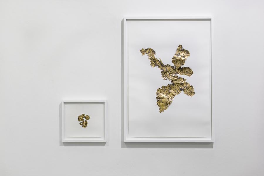 Santiago Reyes Villaveces, Fiebre, 2019, grafito, oro de 24 quilates y hojilla de oro sobre papel. Cortesía del artista e Instituto de Visión, Bogotá