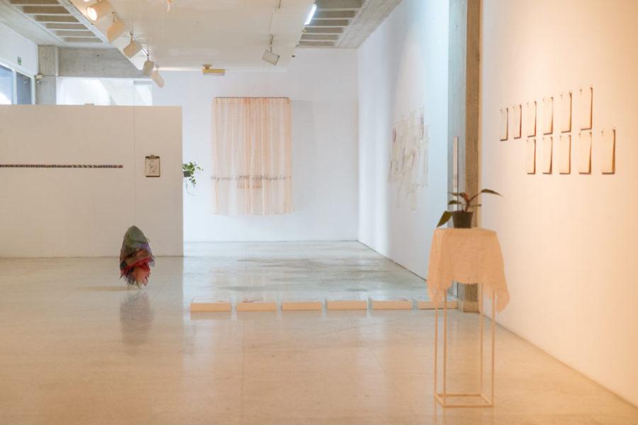 Exposición Morada, refugio y encierro de Malu Valerio. Museo de Arte Contemporáneo del Zulia-MACZUL, 2019