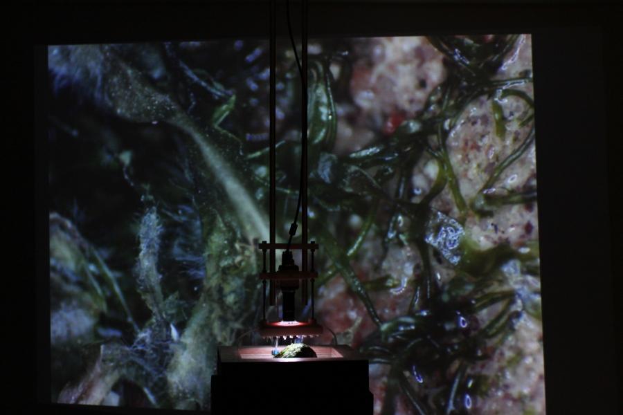 """Cristo Riffo, Las Ciudades Invisibles, parte de la exposición """"Marea: Arte y espacio marítimo"""", en Centex, Valparaíso, Chile, 2019. Foto cortesía de Centex"""