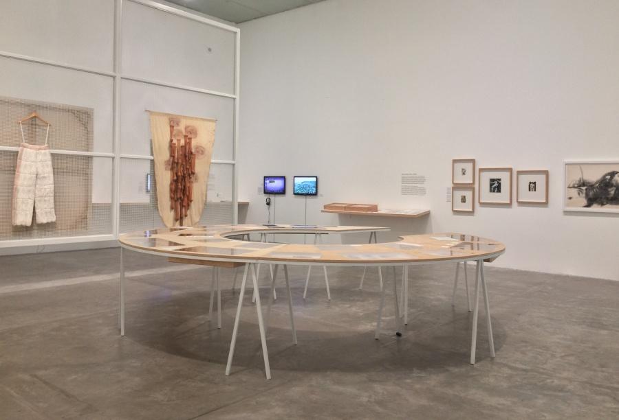 """Vista de la exposición """"Virginia Pérez-Ratton. Centroamérica: deseo de lugar"""", en el MUAC, Ciudad de México, 2019. Foto: Andrea Cuevas"""