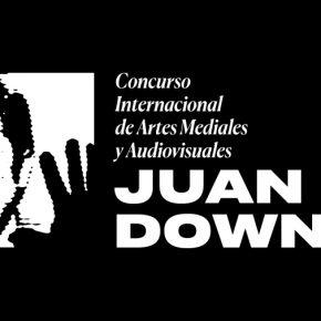 Concurso Juan Downey, Chile