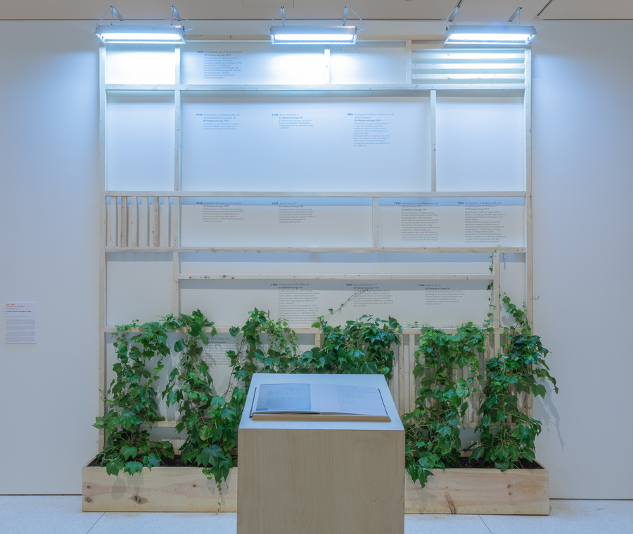 Celia-Yunior, An Ecology of Frictions, 2019, Wood trellis, soil, Boston ivy, LED grow lamps, book with podium. Courtesy of the artists.