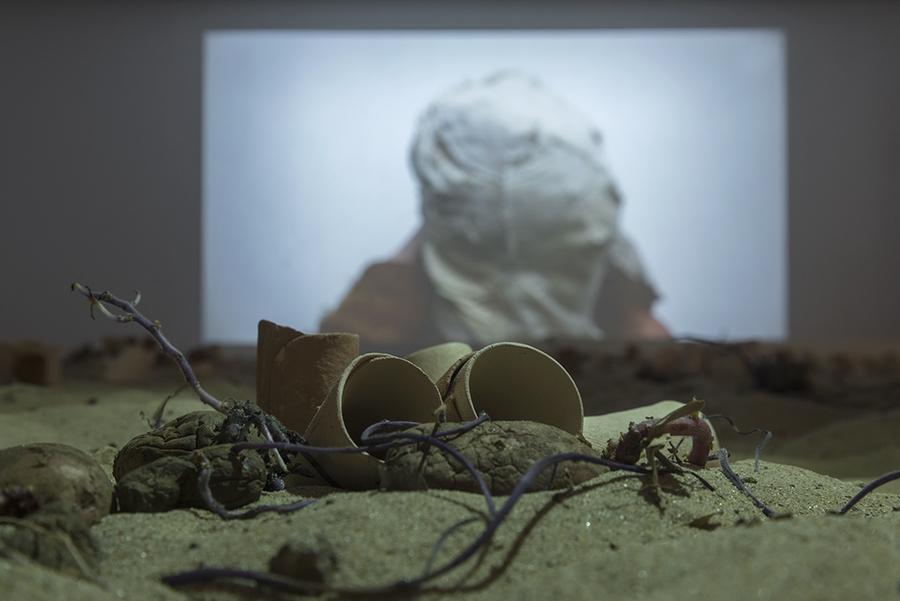 """""""La Playa"""" (detalle). Vista de la exposición """"Humus"""", de Paula de Solminihac, en el Museo de Artes Visuales (MAVI), Santiago de Chile, 2019. Foto: Jorge Brantmayer"""