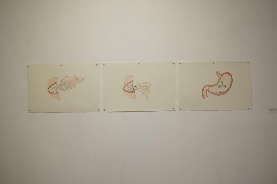 """Gabriel Rodríguez, Frijol estomacal, 2019. Vista de la exposición """"Ingesta"""", en TEOR/éTica, San José de Costa Rica, 2019. Foto cortesía de TEOR/éTica"""