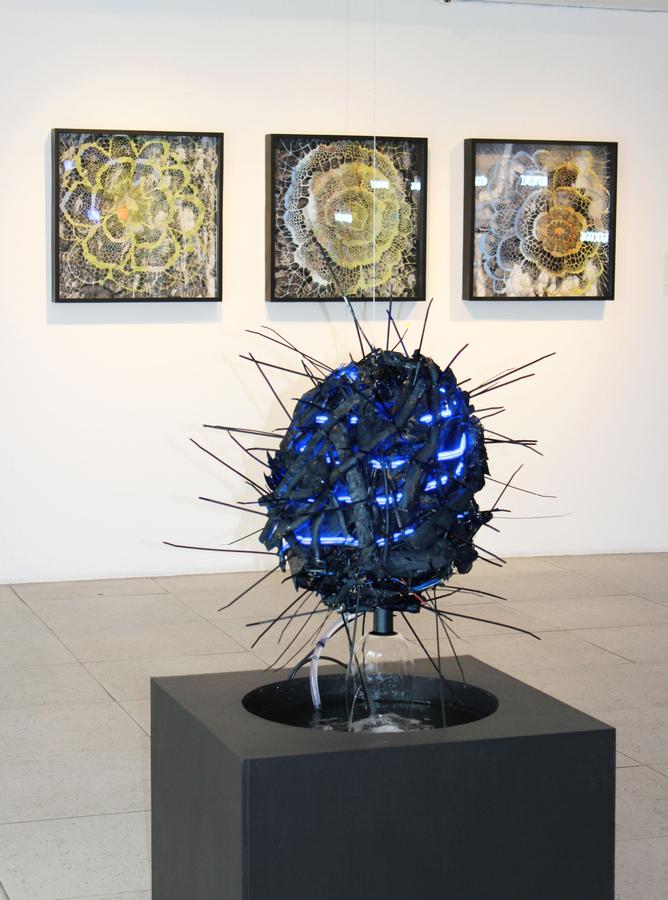 """Vista de la exposición """"Padece"""", de Máximo Corvalán-Pincheira, en Galería Artespacio, Santiago de Chile, 2019. Cortesía del artista y Artespacio"""