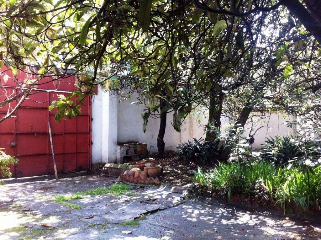 jardín-1-1600x11951111