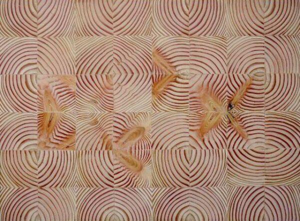 Martín-Kaulen-Conciencia-de-los-árboles-2014-55-x-70-cm.-Cortesía-del-artista