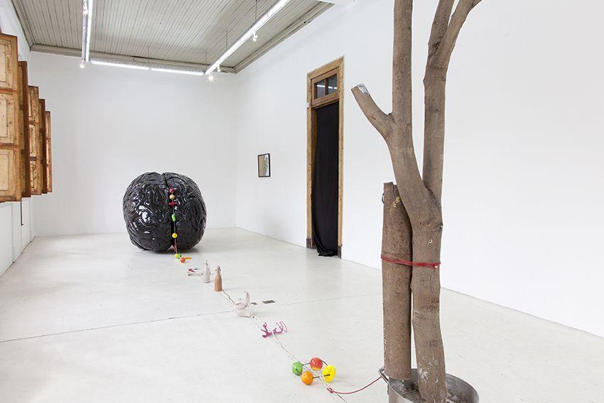 Mario Navarro. Sesos de Asno. Vista de la muestra. Die Ecke Arte Contemporáneo. Santiago de Chile. 2016. Foto cortesía del artista.