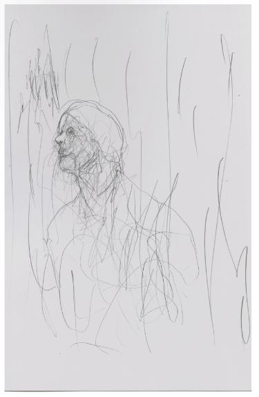 Cristóbal Lehyt, Dibujos, 2012, carboncillo a muro, dimensiones variables