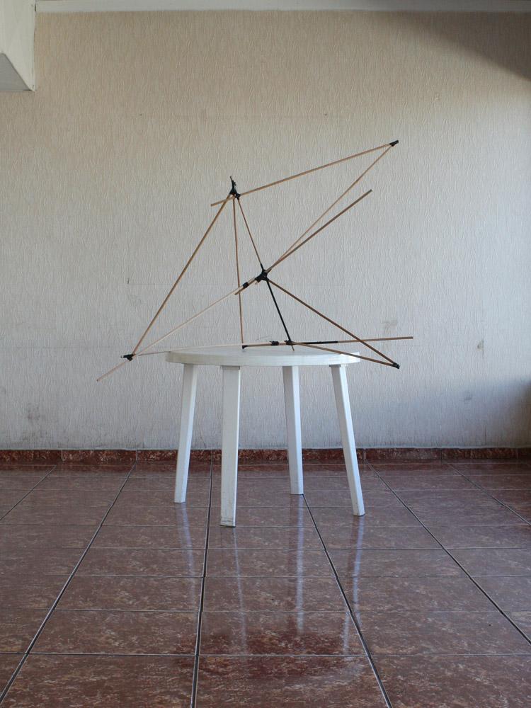 Felipe Mujica, Línea de hormigas (Santiago), 2011, Impresión digital sobre papel fotográfico, 30 x 40 cm. Serie de 10 imágenes. Cortesía del artista