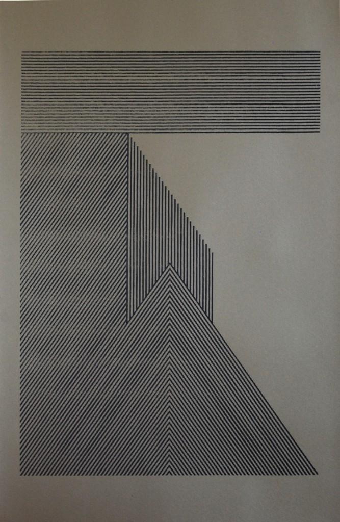 Felipe Mujica, New Music Media n.2 in Tsumagoi, 1976, 2011, Foto-serigráfica sobre papel, 101 x 66 cm. Edición de 3. Cortesía del artista
