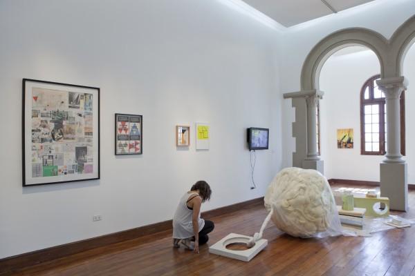 Vista de la exposición Plantas en una Tormenta Eléctrica, Galería Macchina, 2014. Foto: Constanza Valderrama