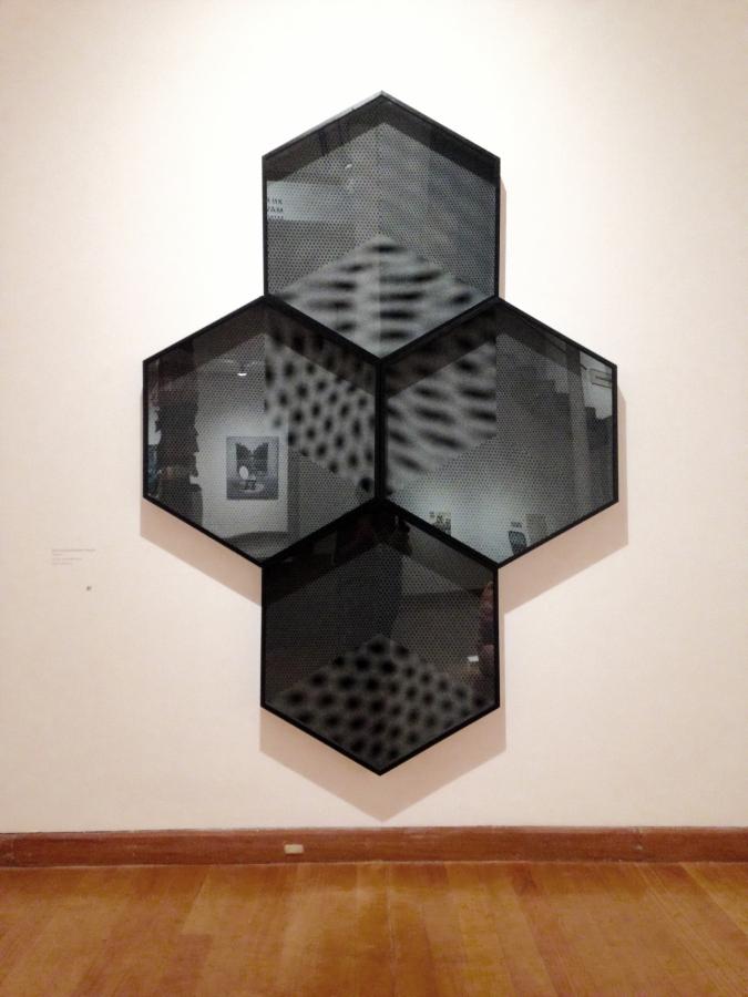 Bernardita Bertelsen, Trans, 2017. Vinilo autoadhesivo. 2,50 x 2,00 m. Cortesía de la artista