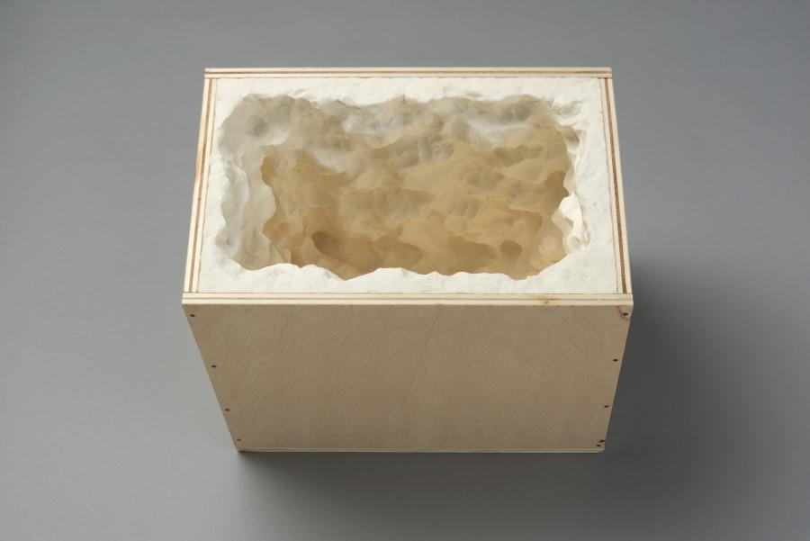 Marlon de Azambuja, Pensamientos Húmedos, 2015, Caja de madera y pasta de modelar, 40 x 40 x 40 cm. Foto: Jorge Brantmayer