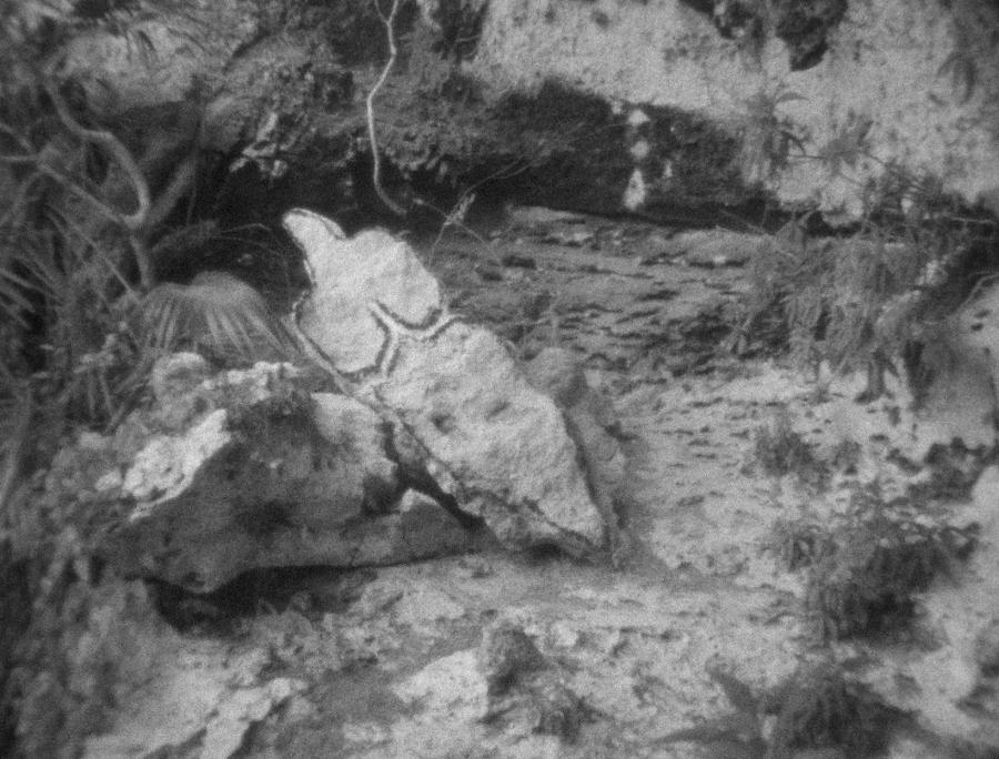Ana Mendieta, Esculturas Rupestres, 1981, film Super 8, blanco y negro, silente. © The Estate of Ana Mendieta Collection, LLC.,Cortesía: Galerie Lelong & Co