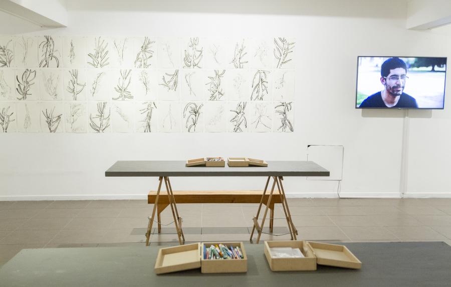Vista de la exposición Acción Botánica: Crónicas de Dibujo II, del Colectivo MICH, en Galería Balmaceda Arte Joven, Santiago de Chile, 2017. Cortesía: BAJ