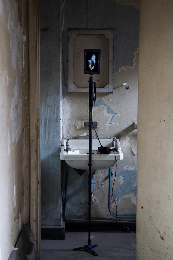 Cristóbal Cea, Montt con Las Heras, animación 3D full HD, loop, 3 minutos. Trípode y monitor de campo. Foto: Rodrigo Maulén