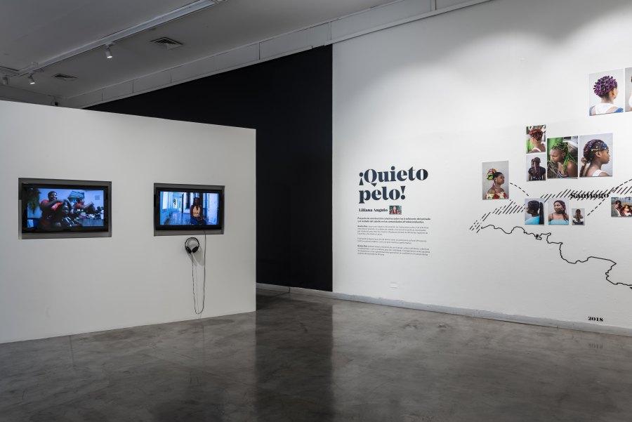 Vista de la exposición ¡Quieto Pelo! (2008-2018), de Astrid Liliana Angulo Cortés, en el CCE Santiago, 2018. Foto: Luis Piñango