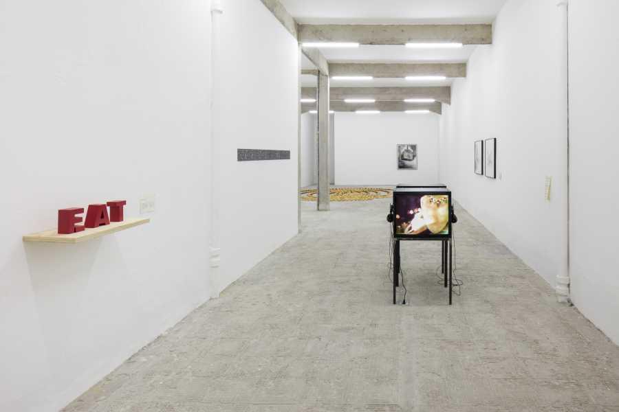 Vista de la exposición de Regina Vater en la galería Jaqueline Martins, Sao Paulo, 2018. Cortesía: Galeria Jaqueline Martins. Foto: Gui Gomes