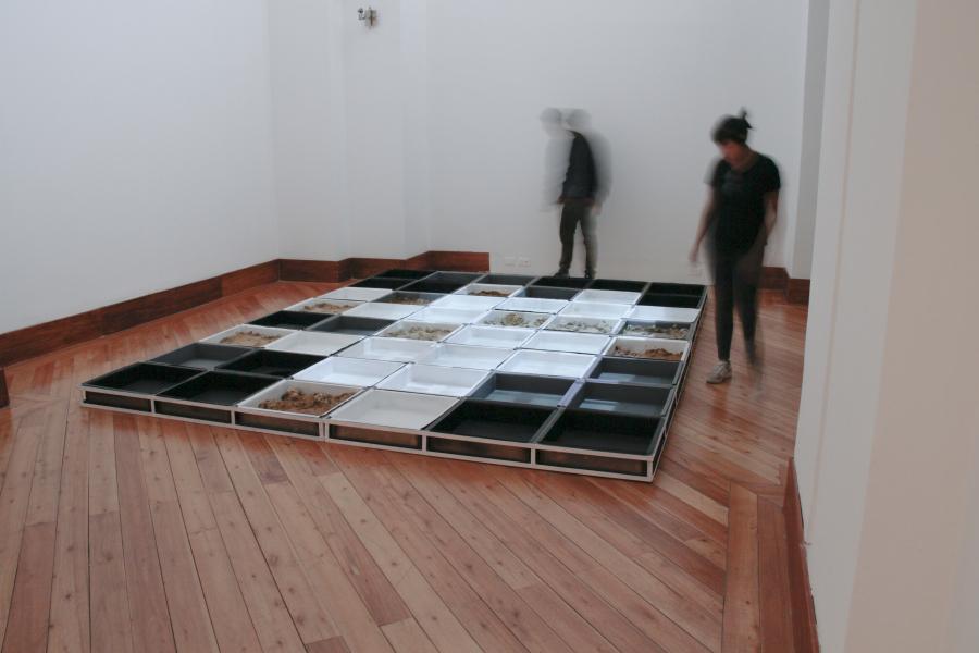 Angélica Alomoto, Rastro, 2009, video-escultura, dimensiones variables. Foto: Pablo Jijón