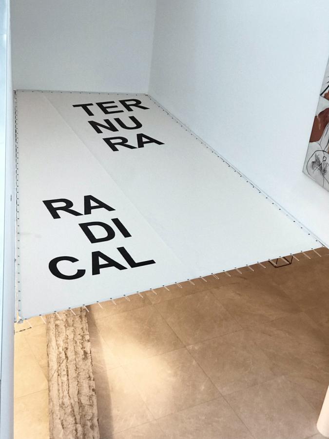 """Vista de la exposición """"Ternura Radical"""", de Iván Argote, en el MALBA, Buenos Aires, 2018. Foto cortesía del artista"""