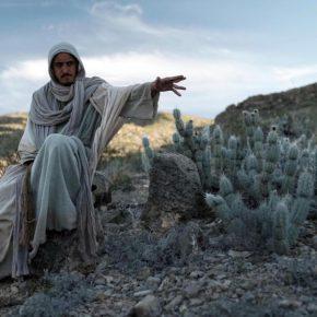 Pablo Vargas Lugo, Actos de Dios, 2019, still de video. Cortesía del artista