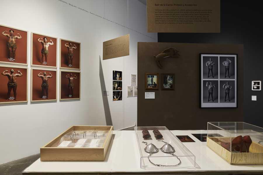 """Vista de la exposición """"Arte acción en México. Registros y residuos"""", en el MUAC/UNAM, Ciudad de México, 2019. Cortesía: MUAC"""
