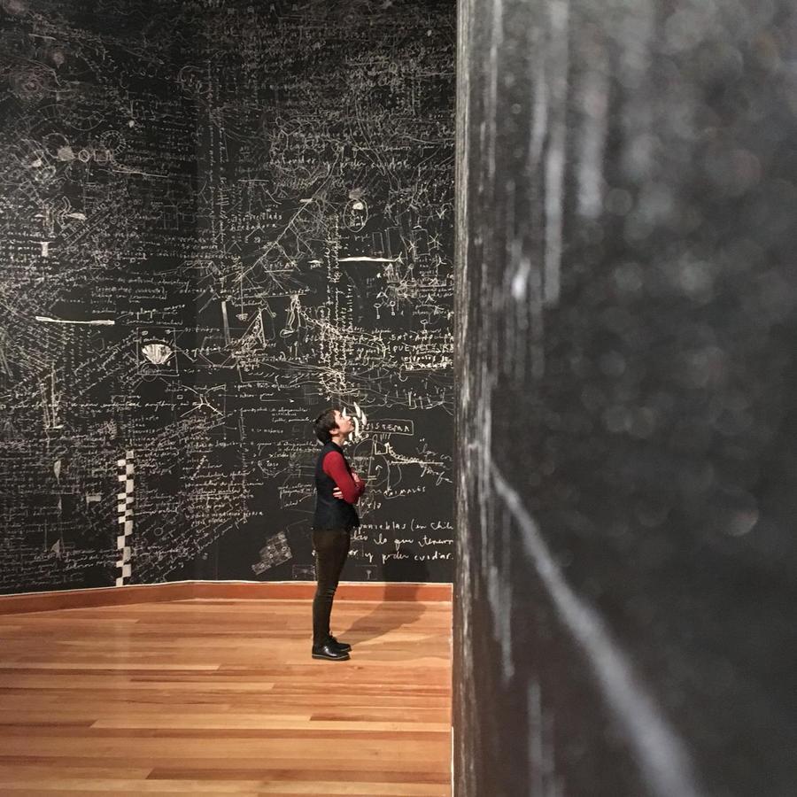 """Vista de la exposición """"Humus"""", de Paula de Solminihac, en el Museo de Artes Visuales (MAVI), Santiago de Chile, 2019. Foto: Javier Otero"""