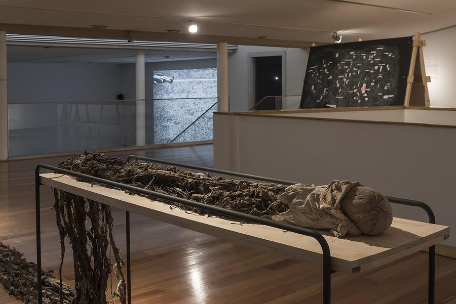 """Vista de la exposición """"Humus"""", de Paula de Solminihac, en el Museo de Artes Visuales (MAVI), Santiago de Chile, 2019. Foto: Jorge Brantmayer"""