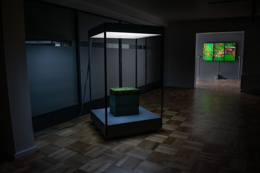 Vista de la exposición Ascenso (Unplugged), de Samuel Domínguez, en Galería AFA, Santiago de Chile, 2019. Foto: Pía Bahamondes