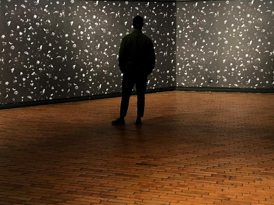"""Obra de Gonzalo Fuenmayor en """"Universos desdoblados"""", curaduría de La Usurpadora para el 45 SNA, MAMBO, Bogotá, 2019. Foto cortesía de La Usurpadora"""
