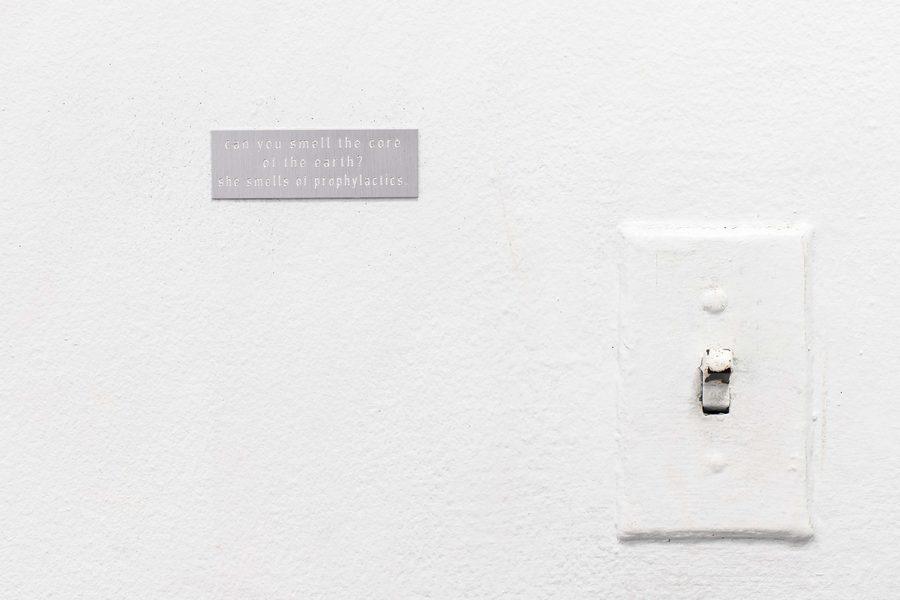 agustine zegers, Perfume Terrenal, Lenteja Áurica, poema visual, Anderson Gallery, Georgia.