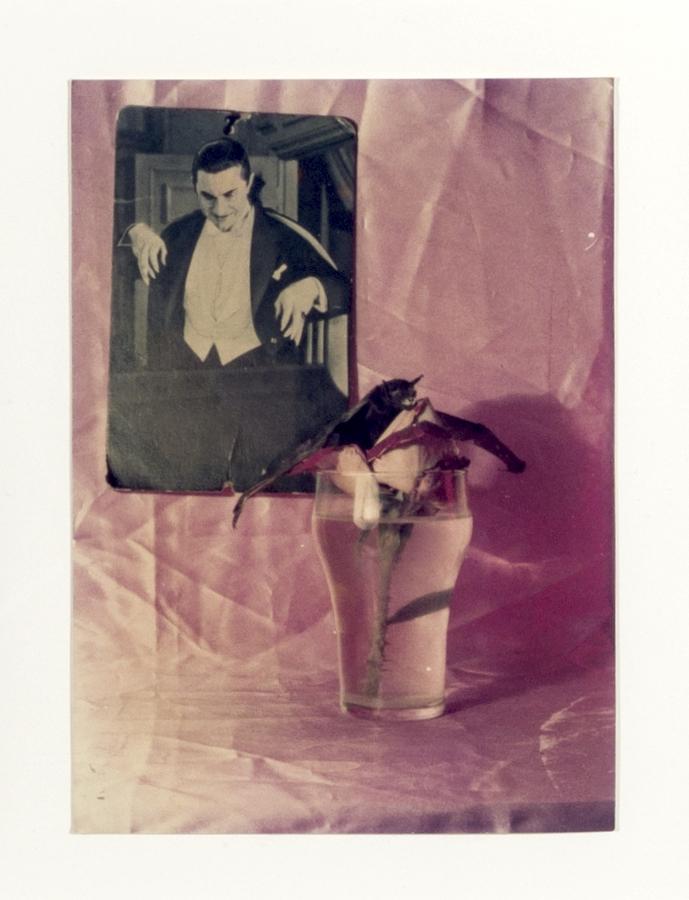 Roberto Obregón, Sin título (estudio para una crónica dedicada a Bram Stoker), detalle, 1976. Gelatina de plata sobre papel; políptico de siete piezas. © Archivo Roberto Obregón.