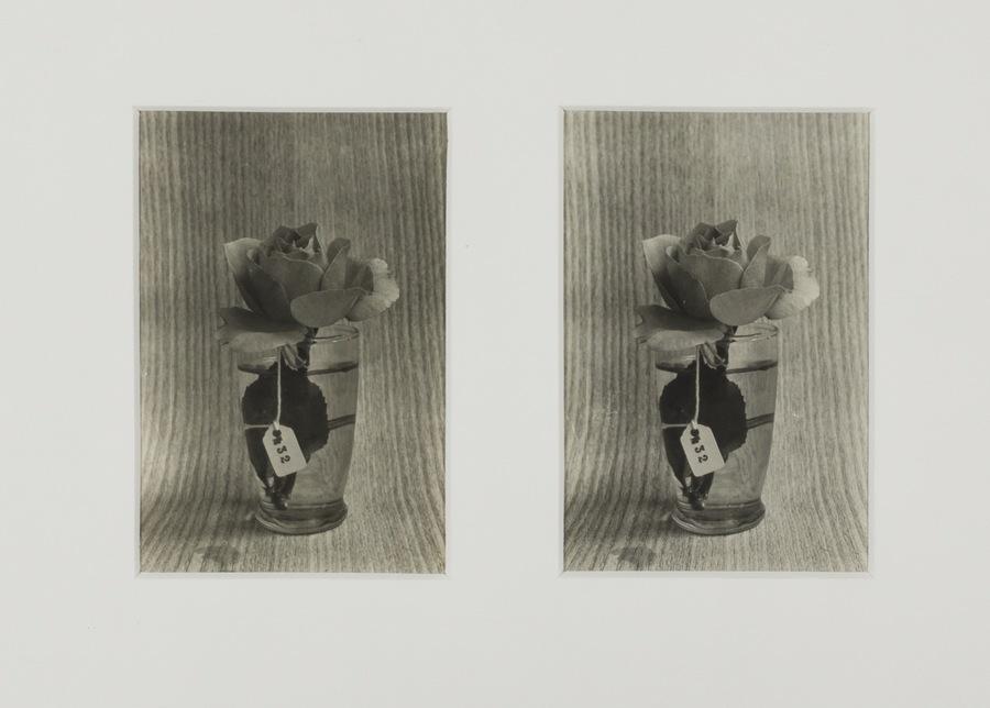 Roberto Obregón, Sin título (estudio para una Crónica), c. 1978 (detalle). Gelatina de plata sobre papel; seis fotografías. © Archivo Roberto Obregón