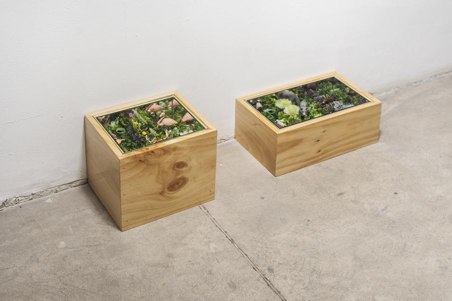 Jorge Julián Aristizábal, Belleza sintética, 2019, flores y animales plásticos, espejos y madera, dimensiones variadas. Cortesía: Liberia